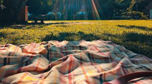Fall picnic blanket on the grass in the sun